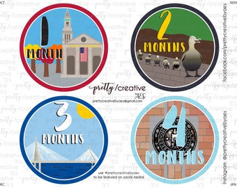 Month by Month Baby Stickers - Boston Theme