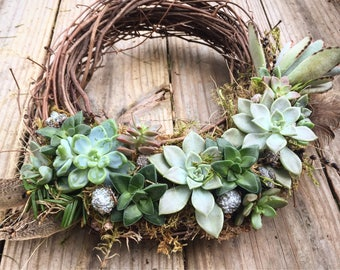 Living succulent wreath on 10 inch base