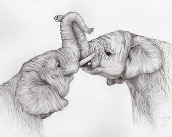 Elephant Embrace Framed Limited Edition Print