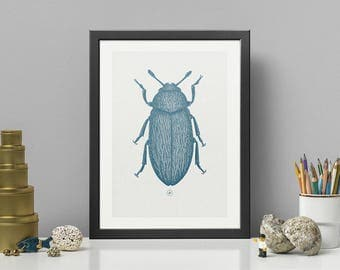 HAIRY BEETLE | Blue HQ Pigment Print on eco-friendly paper