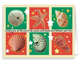 Season's Greetings Seashells Christmas Card- 18 Cards & Envelopes - Beach Cards - RKX10
