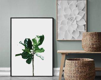 Botanical print, Scandinavian print, Wall art print, Large wall art printable, Plant print, Tropical leaf print, Tropical leaves, Green leaf