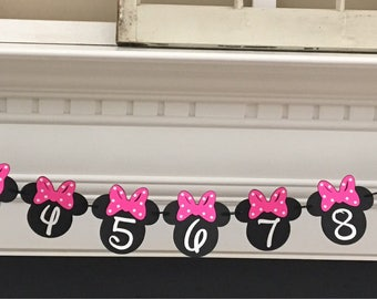 Minnie Mouse First Year Picture Banner