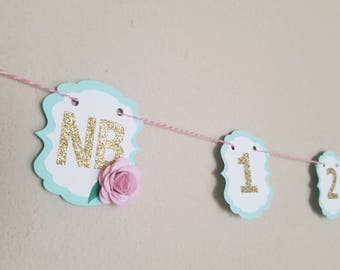 Pink and Mint Photo Banner... First Birthday... Baby Girl... Flower Party Decor...
