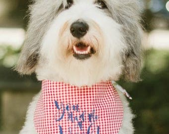 You Had Me At Woof! Red Gingham Bandana || Reversible Dog Bones Southern Classic Tie Pet Scarf || Puppy Gift by Three Spoiled Dogs