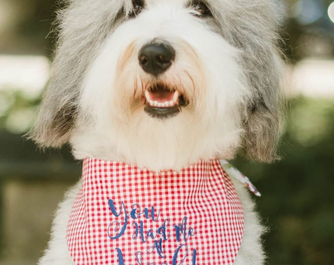 Featured listing image: You Had Me At Woof! Red Gingham Bandana || Reversible Dog Bones Southern Classic Tie Pet Scarf || Puppy Gift by Three Spoiled Dogs