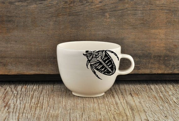 Porcelain allongé coffee cup with vintage INSECT prints