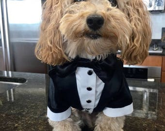 Wedding tuxedo for dogs Formal dog tuxedo Custom made dog suit Shiny wedding attire for dog
