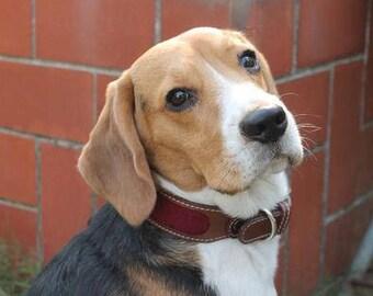 PoochMate Chelsea Dog Collar - Wine Small