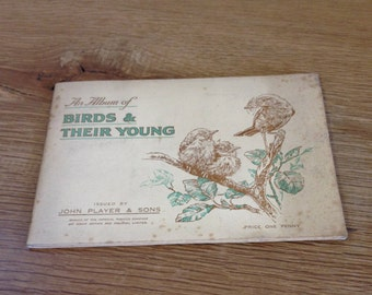 Vintage Complete - An Album of Birds and Their Young John Player And Sons Cigarette Cards. Tobacciana. In Good Condition