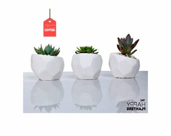 Geometric Planter, Cactus Planter Gifts, Geometrical Planter, pot succulent modern, Minimal Planter, tabletop planter, desk plant pot