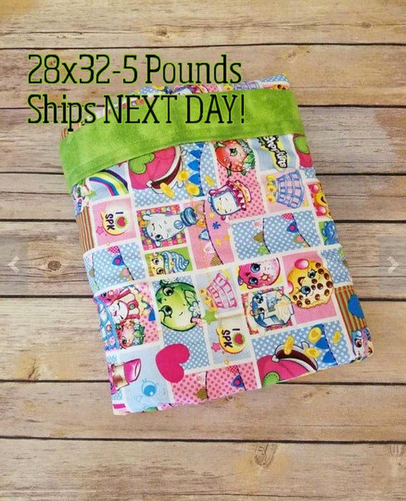 Character, 5 pound, WEIGHTED BLANKET, 5 pounds, 28x32, for Autism, Sensory, ADHD, Calming, Anxiety,