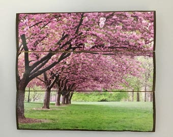 Cherry blossoms wooden wall decor