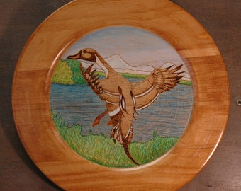 Duck Plates - wall hanings