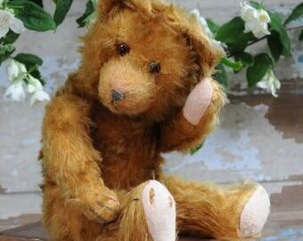 Antique teddy bear 1930-40's Mohair, Humpback.