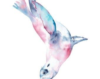California Sea Lion Watercolor Print, 12x18, Seal Watercolor