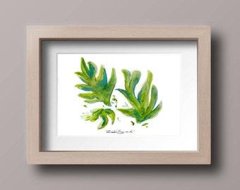 VERT - M - Print, Botanical, Art Print, Wall Print