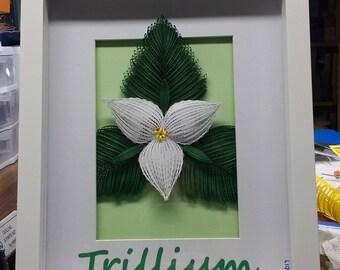 Trillium Quilled Paper Artistry