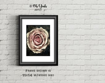 Vintage Rose Art Print Free 5x5 Included!