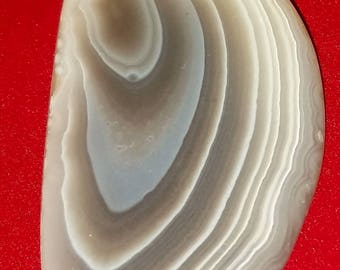 Botswana Agate Cabochon large great lines