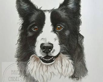 Custom pet portrait, pet painting, Collie portrait