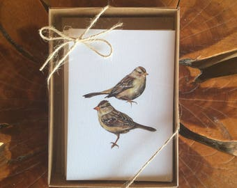 Note Cards - Boxed Set, 8 Blank Cards, Birds of N. America