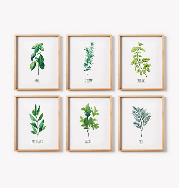 Kitchen Art Herbs: Printable Art/ Herb Print Set/ Kitchen Decor/Kitchen Wall Art/