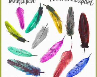 Watercolor Feathers Clipart, Beautiful feathers clipart, Quills Clipart, Handmade Feathers Watercolor, Instant download PNG files