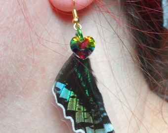 Butterfly wing earring Azuay