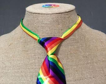 Mini Rainbow Tie