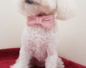 Red and white strip summer premium dog bow tie sample sale