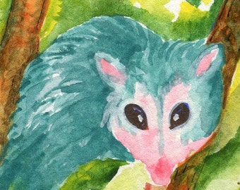 ACEO Original Possum Watercolor Painting. Teal Opossum Art Card