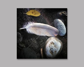 Feather and Stone on Black Sand Beach Photo Wrapped Canvas Wall Art