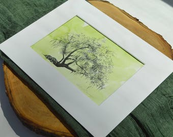 Tree Drawing of Conquistador Oak Ford Plantation by Heather L. Young Watercolor Painting