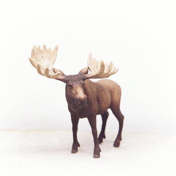 Moose Photography, Nursery Decor, Gender Neutral, Animal Portraits, Wildlife Nursery, Toy Picture, Animal Print, Wall Art Prints, Kids Room