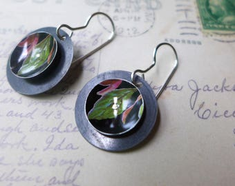 Green Leaves with Pink Buds Tin Earrings, Vintage Tin, Light Weight Discs, Sterling Ear Wires, 10th Anniversary