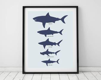 Shark chart, Art prints, Shark decor, Minimalist animal art, Shark toddler room, Ocean decor, Animal decor, Wall art