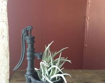 Vintage Mini Cast- Iron Pitcher Pump Planter- Succulent Planter