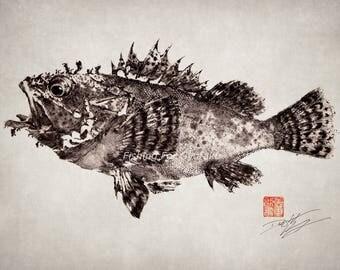 Scorpionfish Rockfish (Kasago) - GYOTAKU print - traditional Japanese fish art