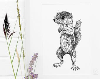 Antelope Ground Squirrel Limited Edition A4 Art Print / Squirrel Giclée Print / Animal Illustration / Black and White Art Print