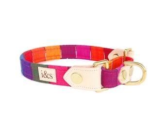 Dog Collar - Martingale - The Rainbow Martingale