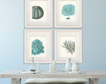 Set of 4 Blue Coral & Sea Urchin Prints - Nautical Print Art Illustration Drawing Poster Digital Print Wall Art Wall Décor Wall Hanging