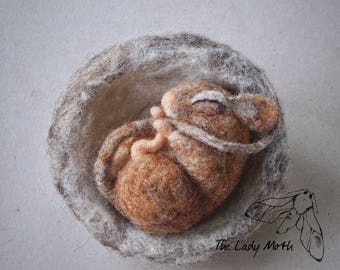 needle felted Sleeping Dormouse by The Lady Moth - needle felted mouse in a nest - sleeping dormouse - ready to ship - UK