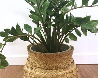 Vintage Tarahumara Woven Basket or Planter, Mexican Handwoven Basket, Large