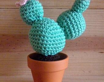 Cactus flowers pink - succulent - Succulents - crochet - decoration