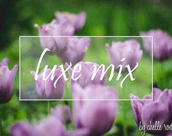 Luxe Mix - Lightroom 6 Preset