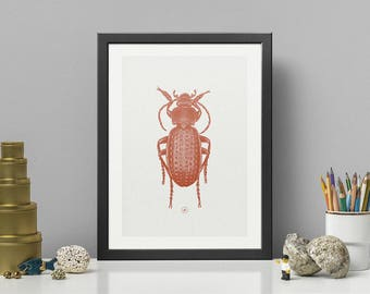 HAMMERED BEETLE | Dark Orange HQ Pigment Print on eco-friendly paper