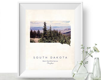 South Dakota | State Tree Map Art, State Map Print, Map Poster, Wall Art, Art Print  | Home or Office Decor, Gift for Nature Lover
