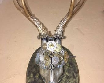 A mounted steampunk Roe deer skull