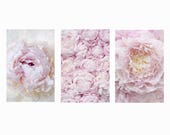 Peony Photography - French Peony Print Collection, Gallery Wall, Blush Pink Floral Decor, Large Wall Art, Home Decor